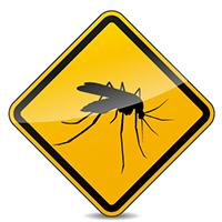 La vacuna de fiebre amarilla es obligatoria para tu viaje a Lesoto.