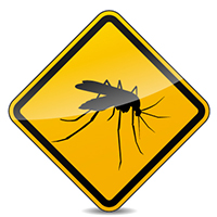 La vacuna de fiebre amarilla es obligatoria para tu viaje a Guayana Francesa.