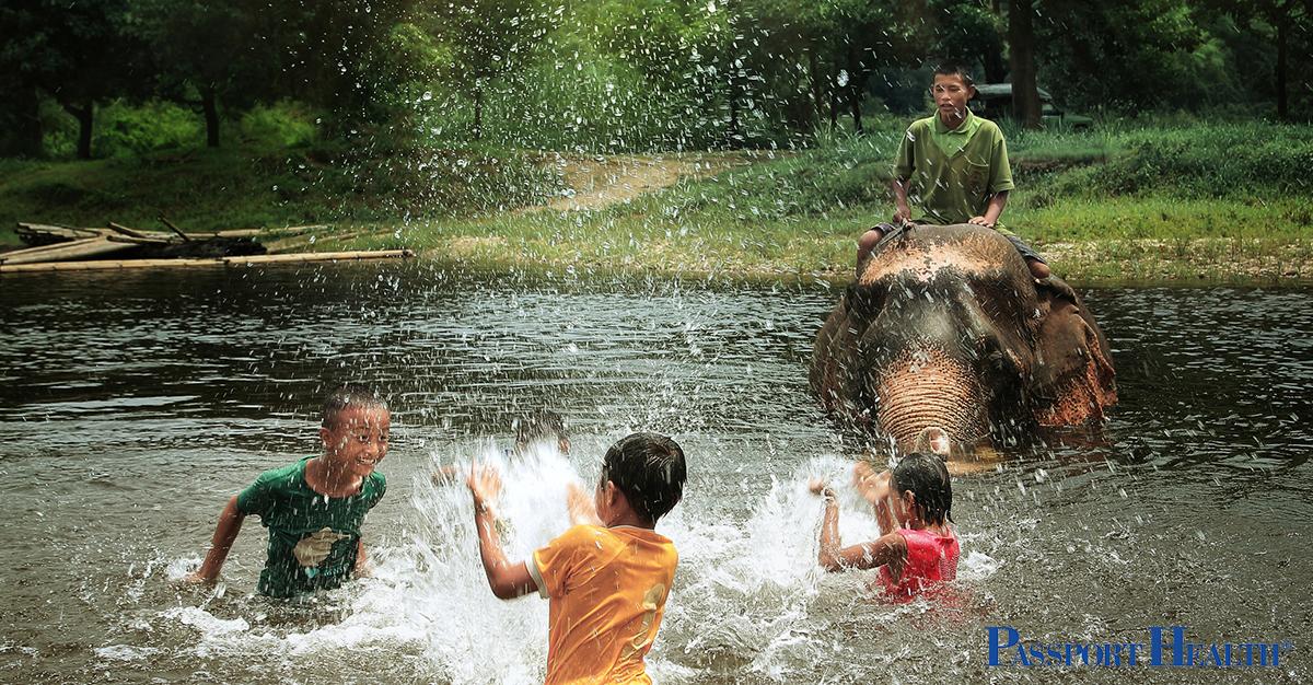 Baño de elefantes en Tailandia
