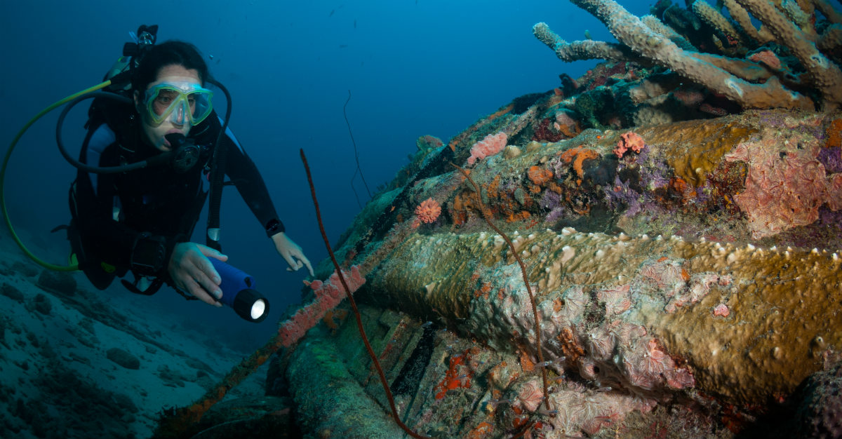Divers in Bonaire visit a sunken ship.