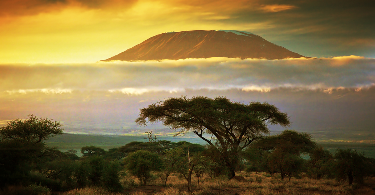 ¡Trekkers, obtengan estas vacunas para Kenia!