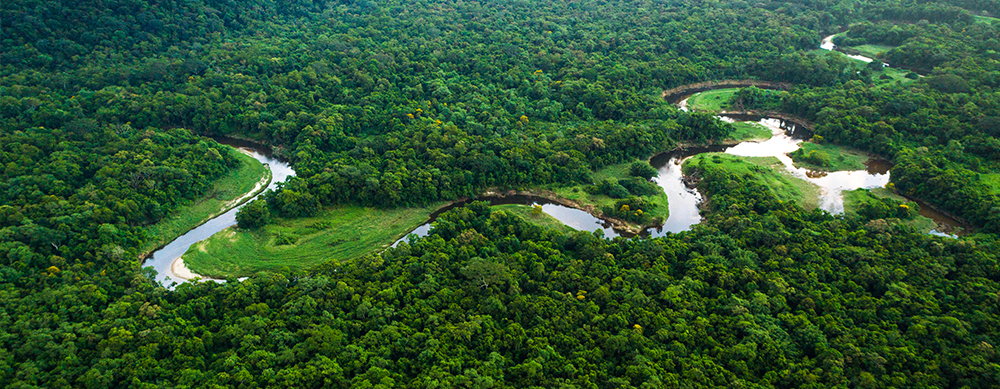 ¡Conoce el Amazonas!