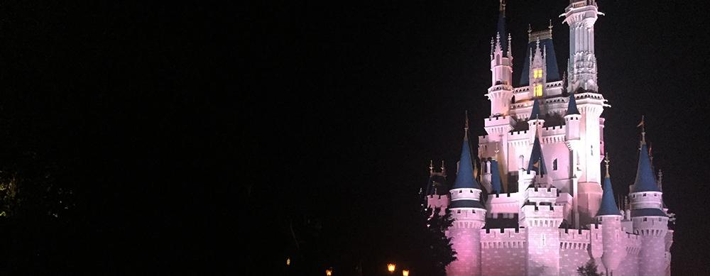 Emiten alerta de rabia en Disney World, en Orlando