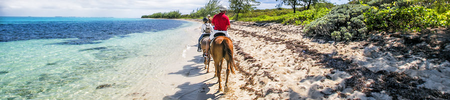 América del Norte y el Caribe te brindan una infinidad de destinos con diferentes climas, personas y culturas para explorar.