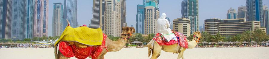 Medio Oriente te brinda una infinidad de destinos con diferentes climas, personas y culturas para explorar.