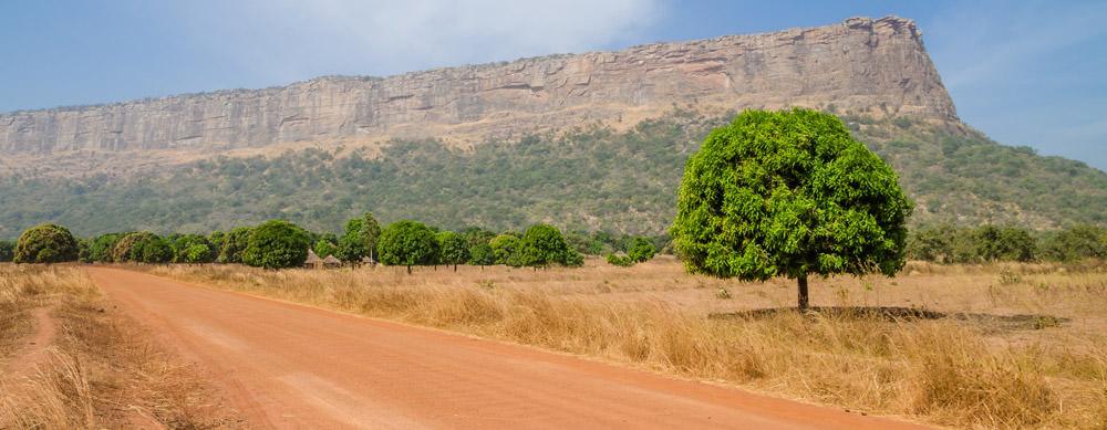Guinea tiene de todo para explorar. Asegúrate de ir en forma segura con tus vacunas de viaje y los consejos de Passport Health.