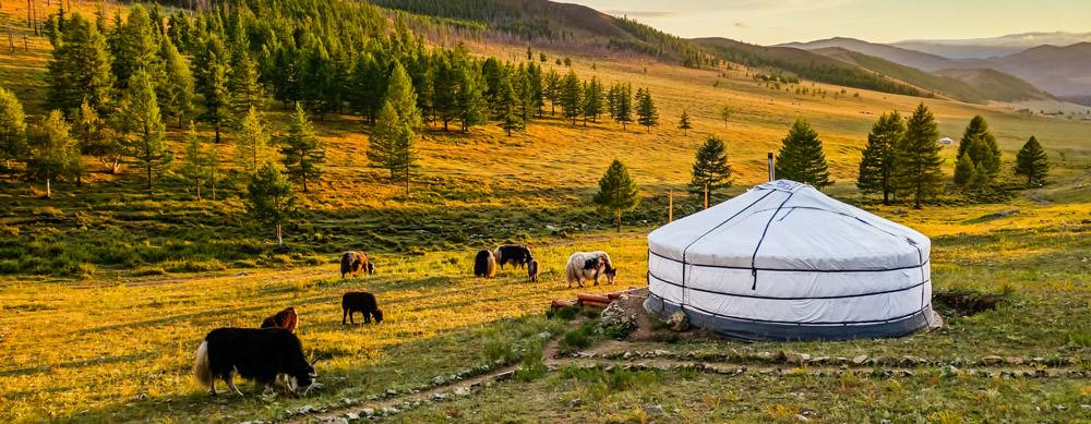 Mongolia tiene de todo para explorar. Asegúrate de ir en forma segura con tus vacunas de viaje y los consejos de Passport Health.