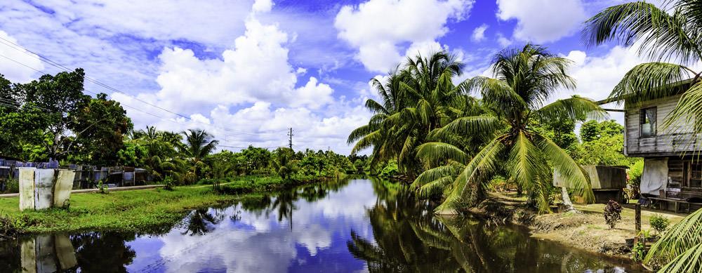 Surinam tiene de todo para explorar. Asegúrate de ir en forma segura con tus vacunas de viaje y los consejos de Passport Health.