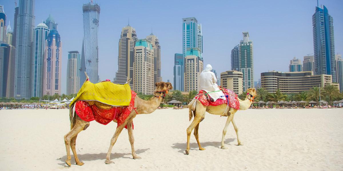 Vacunas y consejos par viajar al Medio Oriente
