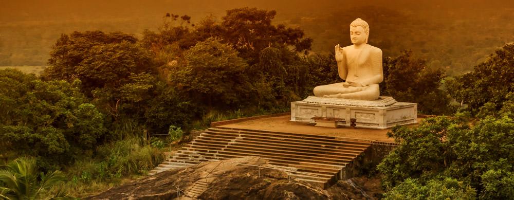 Sri Lanka tiene de todo para explorar. Asegúrate de ir en forma segura con tus vacunas de viaje y los consejos de Passport Health.