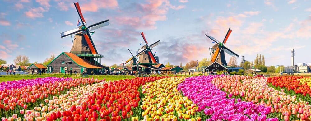Travel safely to the Netherlands with Passport Health's travel vaccinations and advice.